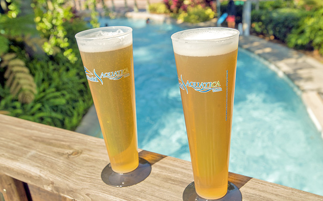 Celebrate Beer Day at Aquatica Orlando